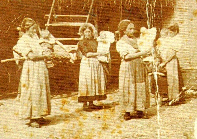 Genealogia Bonomi, guelfi e contadini