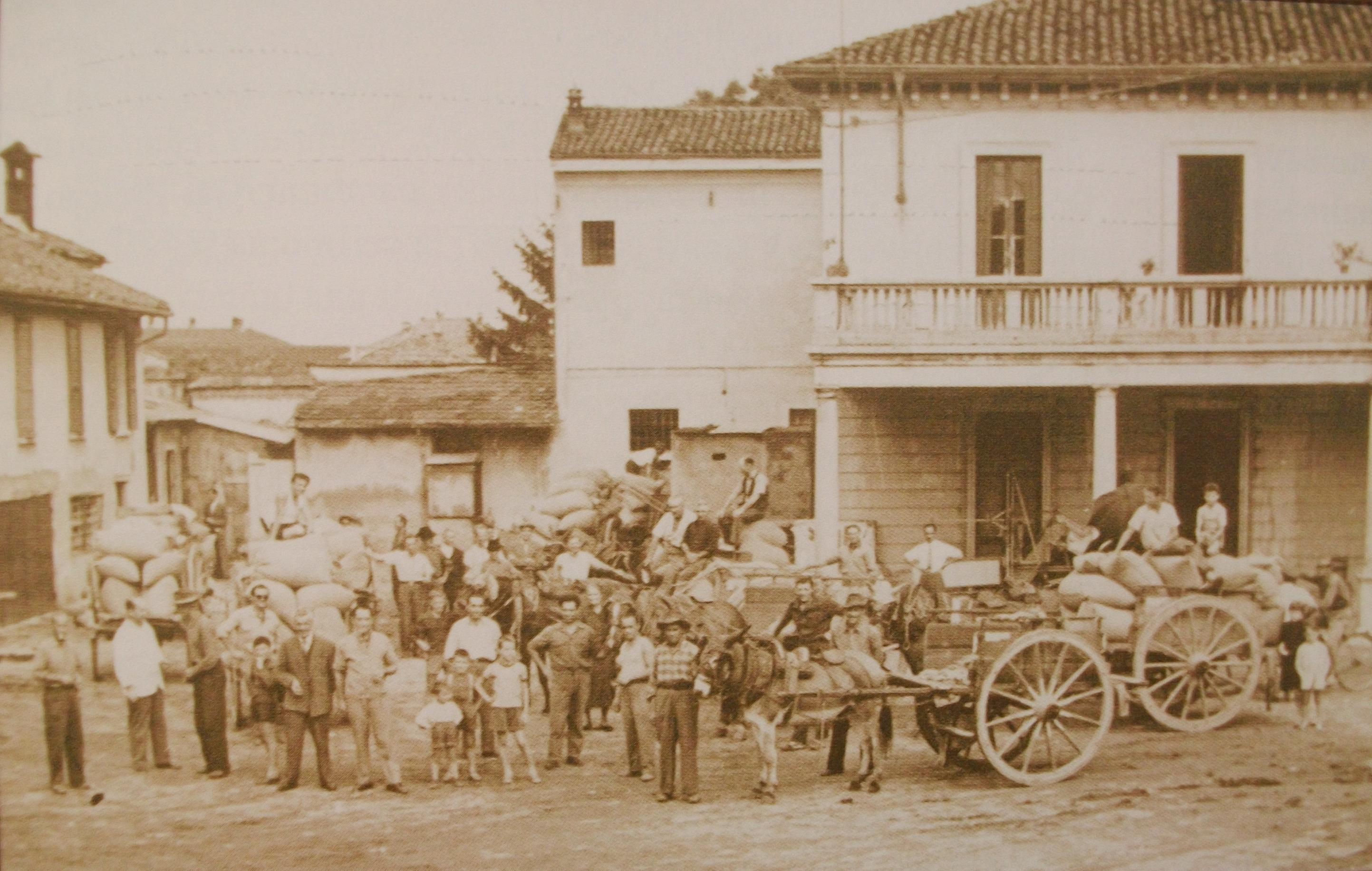 Cooperativa, la storia dell'unione che fece la forza
