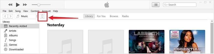 Digite a interface de gerenciamento de arquivos de dados do iOS iSunes
