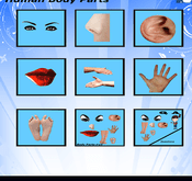 body parts - basic iphone ipad featured
