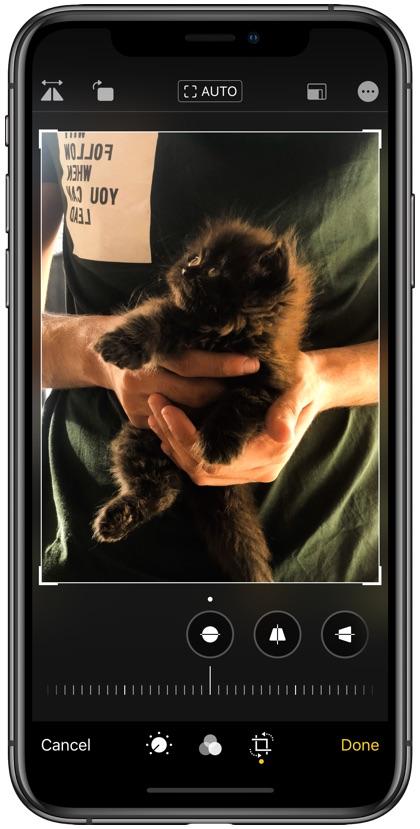 Flip photo in iOS 13
