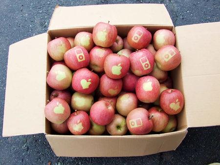 "Mujer australiana paga $1335 dólares por dos ""manzanas"""