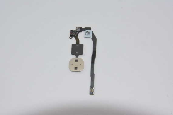 sensor-huellas-iphone5s-3