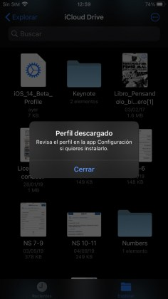 Perfil descargado en iPhone
