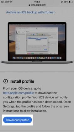 Descarga del perfil beta pública de iOS 14 / iPadOS 14