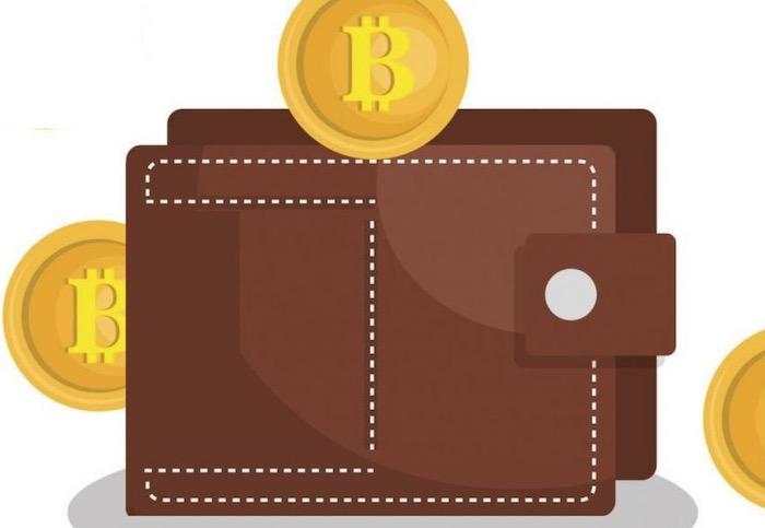 carteras de criptomonedas y cual elegir