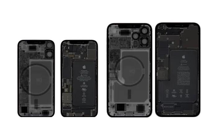 Portada iPhone 12 mini y iPhone 12 Pro Max en rayos X