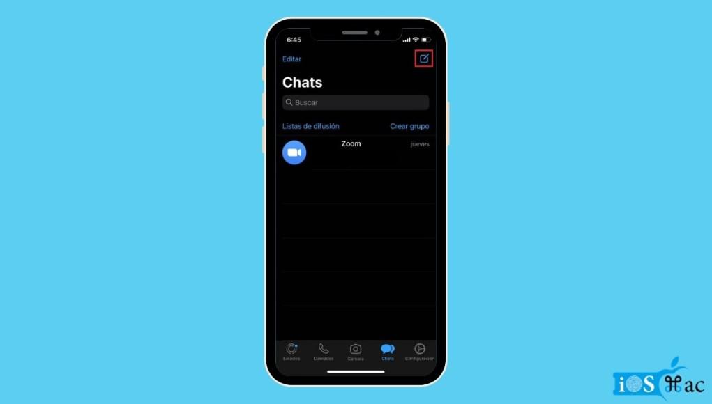 Cómo es el WhatsApp del iPhone