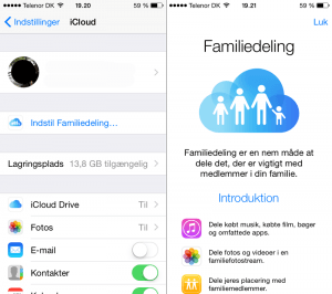 familiedeling-intro