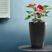 Parrot Pot - Connected Flower Pot