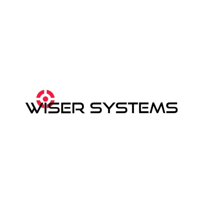 WISER Systems logo