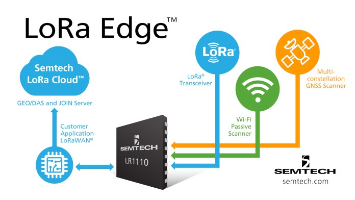 Lora Edge