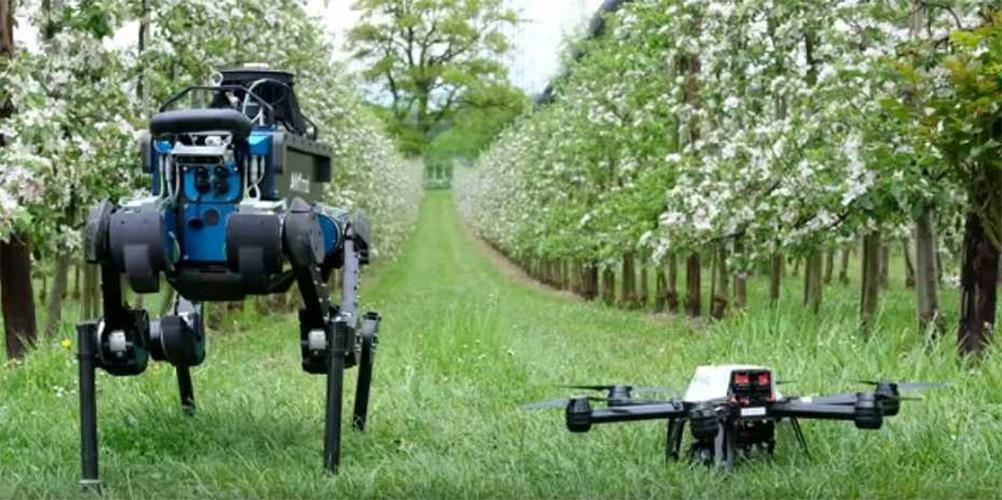 How Digital Transform Agriculture