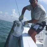 Tarpon Fishing in Miami