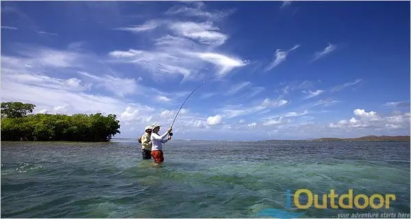 Fly fishing tampa florida ioutdoor fishing adventures for Tampa fly fishing