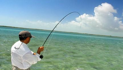 Fly Fishing Florida Why iOutdoor?