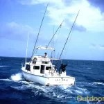 fishing tampa florida Boat Charters in Tampa