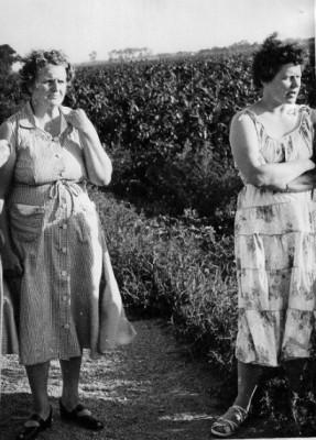 Mrs. William Oehlerking, 47 (left) and Mrs. Ernest Oehlerling, 33, right