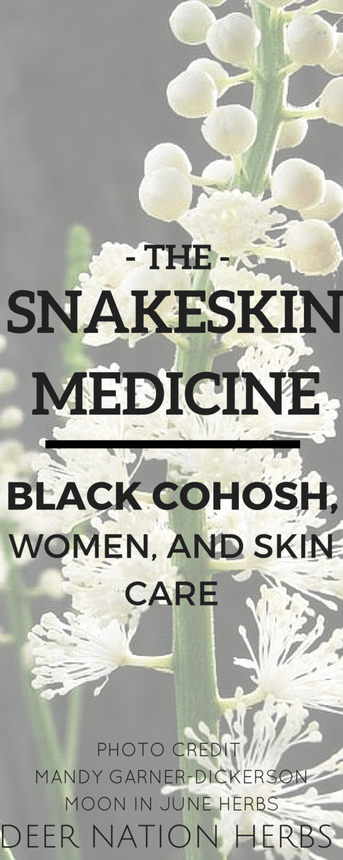 Many medications for acne fail people, particularly women. Learn how black cohosh is being explored and researched as an acne treatment, and how it works in both mainstream medicine and herbalism.