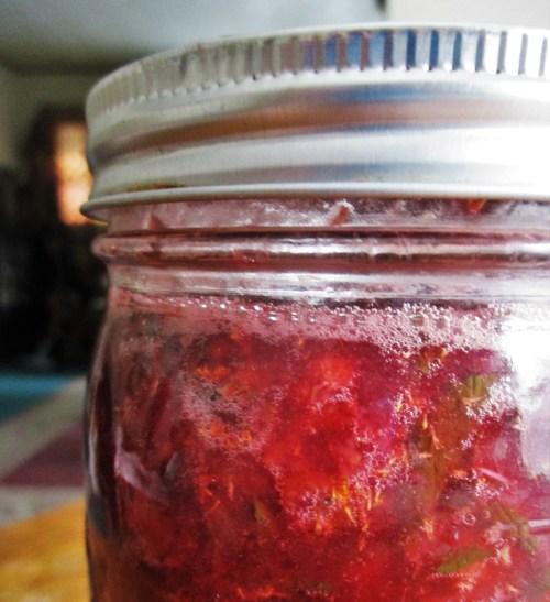 Drinking Vinegar | Iowa Herbalist