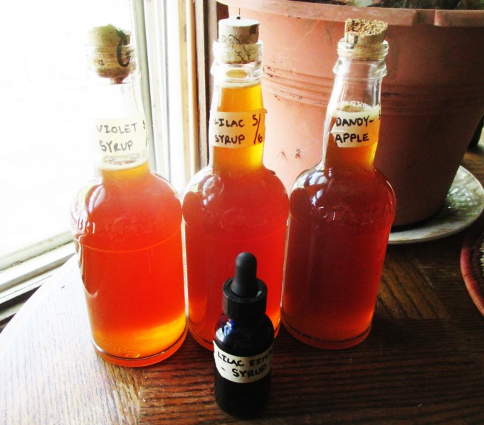 Bottled Floral Simple Syrups | Deer Nation Herbs