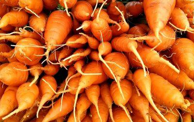Carrots | Jupiter Ridge Farm