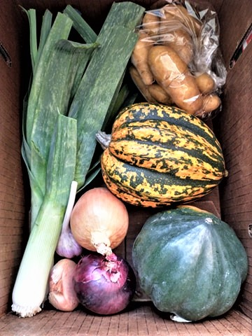 Fall or Winter Farm Share Box | Jupiter Ridge Farm
