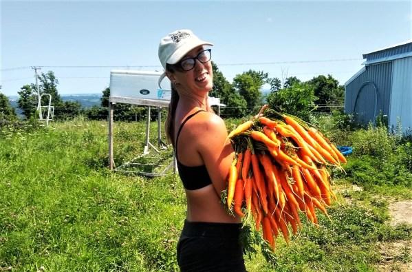 Big Ass Carrots | Jupiter Ridge Farm