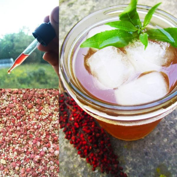 Sumac Elixir Bitters | Iowa Herbalist