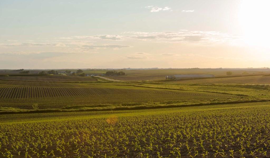 Tama County Iowa Farmland Values