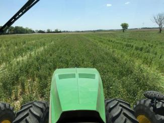 View of soybean planting from the cab.