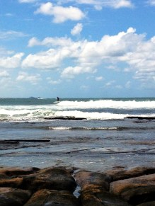 Surfer - one of about 2 dozen