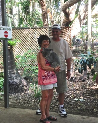In-laws and a koala