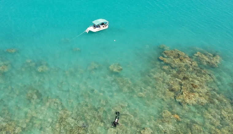 10 Days at the Magnificent Great Barrier Reef (Part 1, Whitsundays)