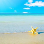 iPad Retina HD Wallpaper Beach and a Starfish