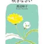 本日(2019年6月14日)のKindle日替わりセール、「置かれた場所で咲きなさい (幻冬舎文庫)」ほか計3冊