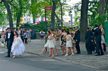 Bridal Party Crossing 5th Ave. - NYC