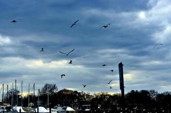 Keyport, NJ 2011