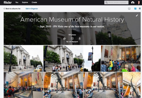 American_Museum_of_Natural_History___Flickr
