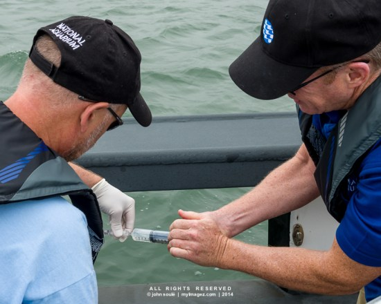 Brent Whitaker and Eric Schwaab of the National Aquarium take water samples