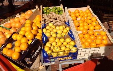 Citrus fruits galore @CelinaLafuenteDeLavotha