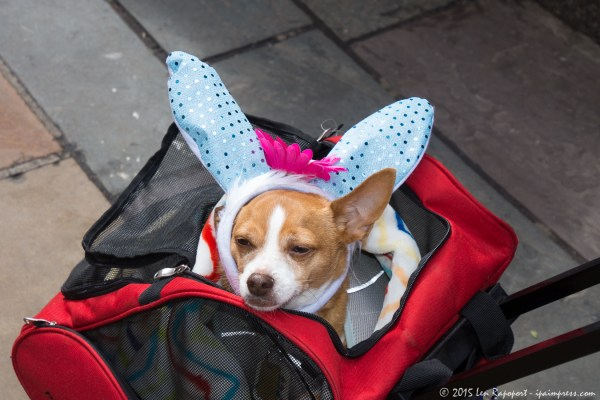 Easter Parade-2016- (14 of 105)HRez