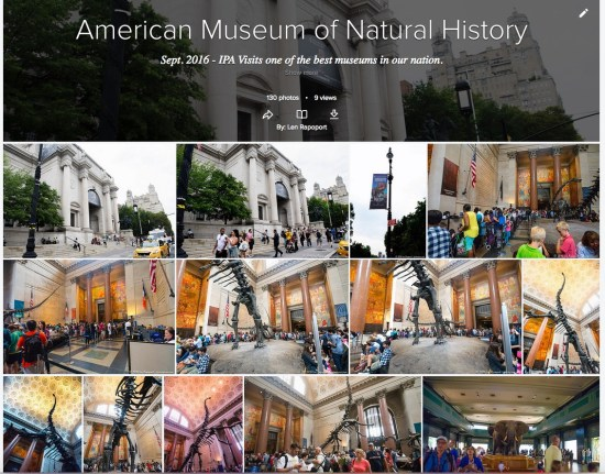 American_Museum_of_Natural_History___Flickr 2