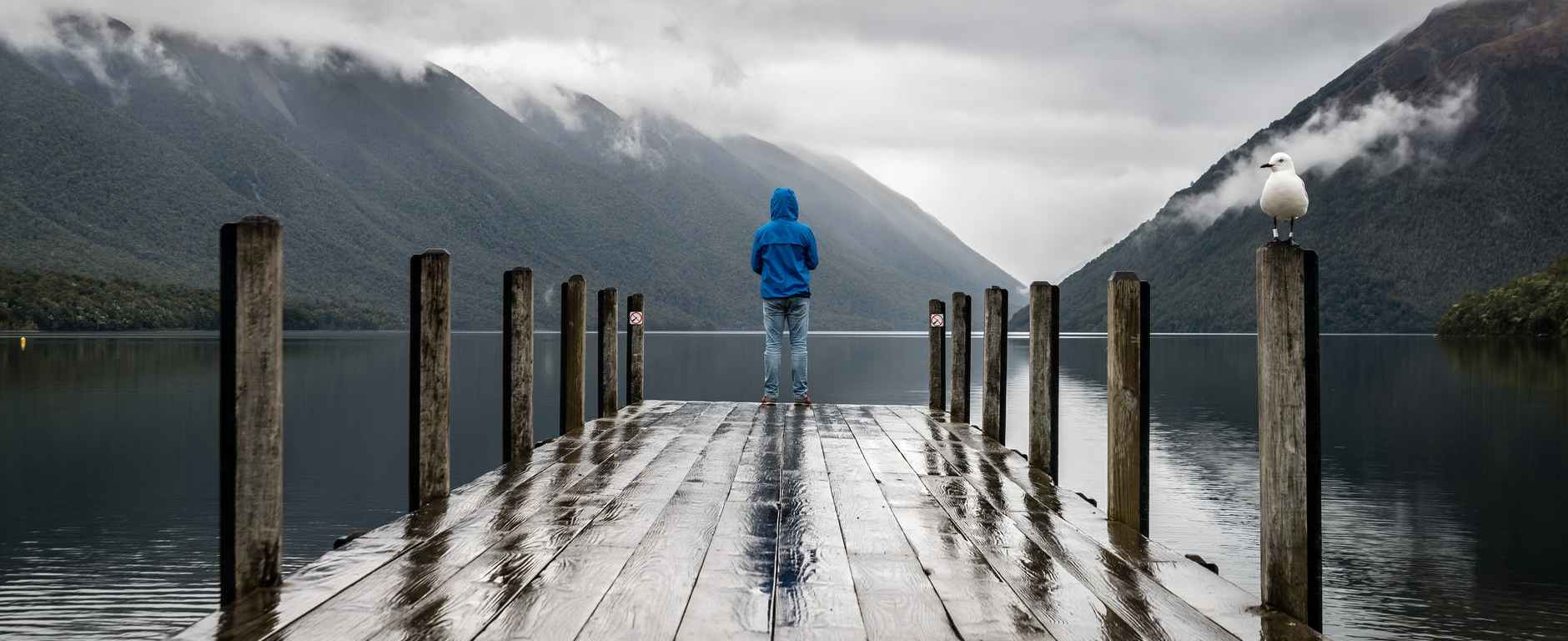 person standing on brown wooden dock