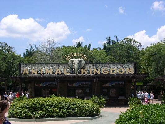 L'ingresso del Disney's Animal Kingdom, il parco a tema faunistico piu grande del mondo