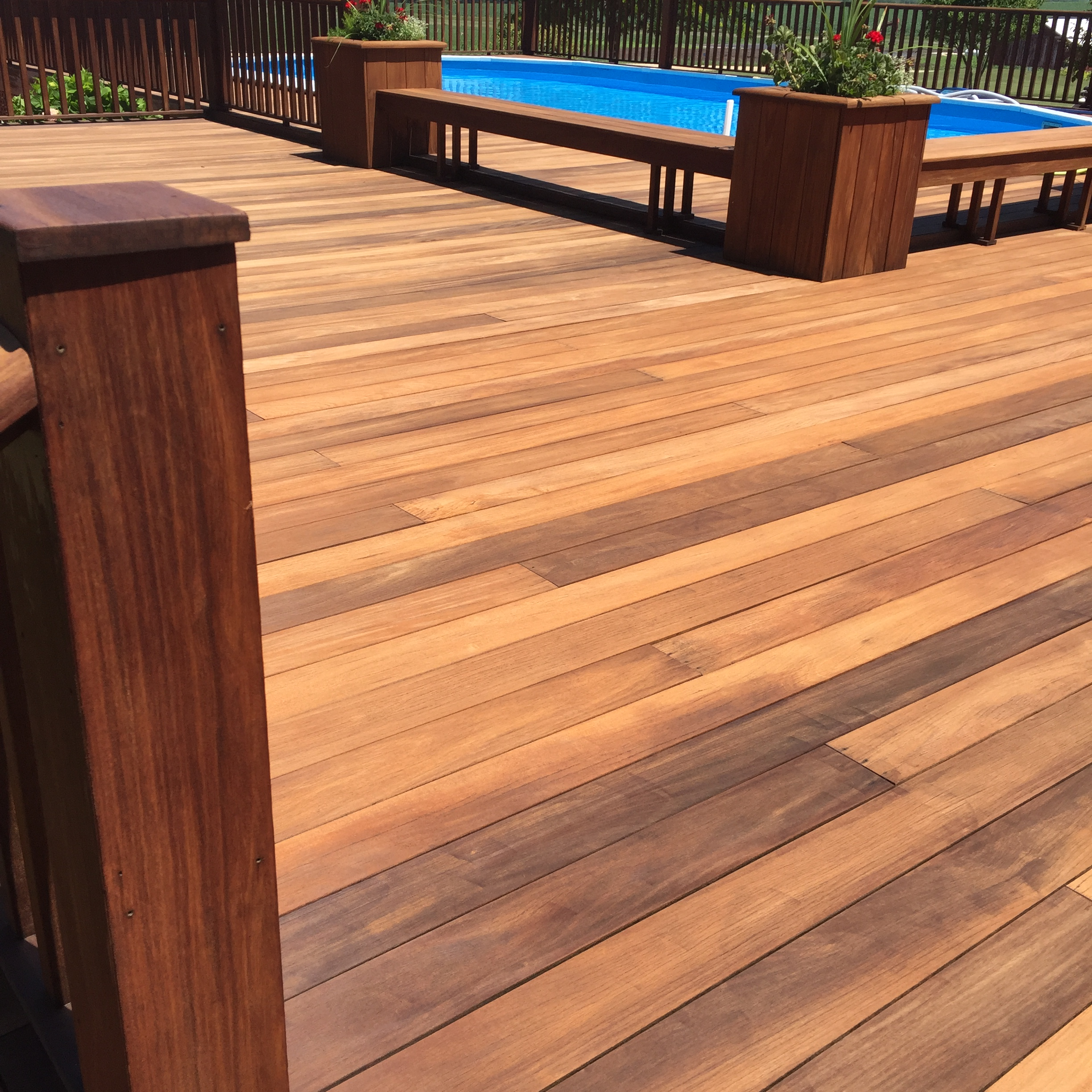 More poolside ipe deck beauty.