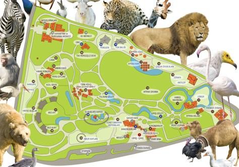 zoo harita