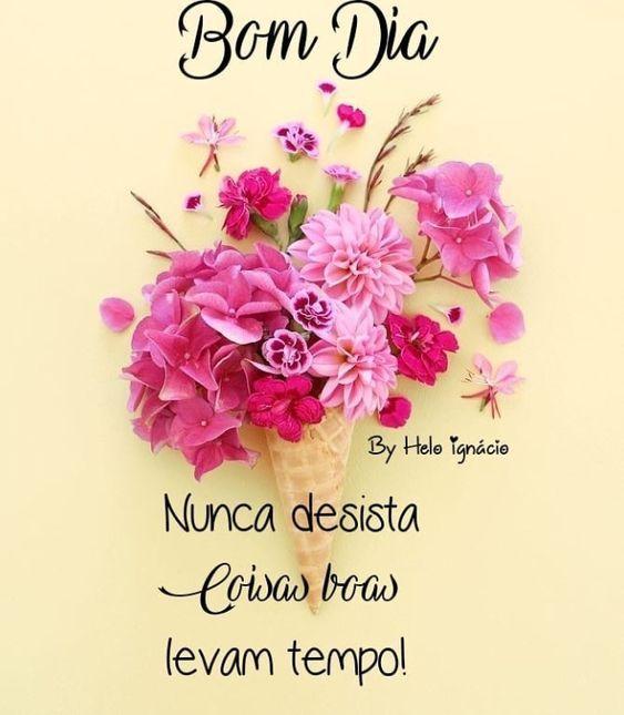 Mensagens lindas de bom dia com flores
