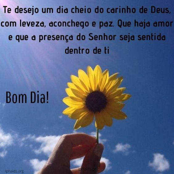 Bom dia com carinho de Deus