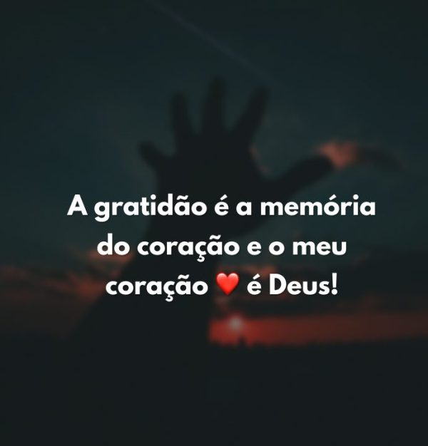 Gratidão memória da vida